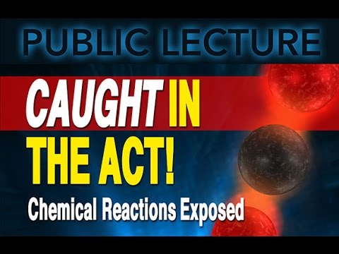 Public Lecture | Caught in the Act! Chemical Reactions Exposed