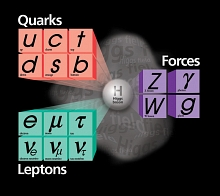 The fundamental particles of the Standard Model