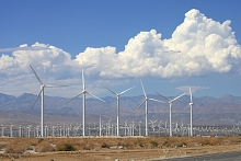 Photo - Wind turbines along a highway