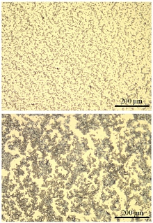 Image -  A new binder material forms a fine-grained (top) lithium sulfide/carbon composite cathode, compared with the large clumps (bottom) that form when another common binder is used.