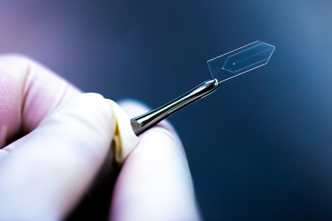 A glass chip used as a nozzle to create thin sheets of flowing liquid.