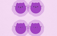 Illustration of a molecule splitting into two Schroedinger's Cat states